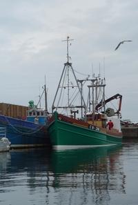 Harbour_boats_jonathan_dickson